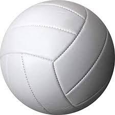 Volleyball2020.max-640×480.jpg