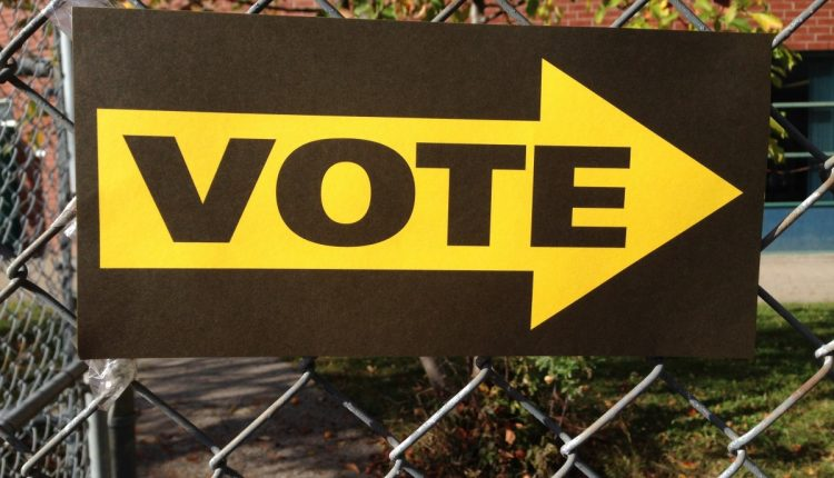 vote_sign_voting_choice_election_democracy_political_support-747227.jpg
